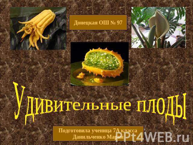 Презентацию по биологии на тему плоды