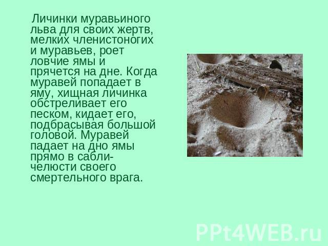 толстолобик в саратовской области