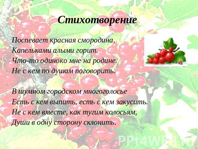 Стих о смородине