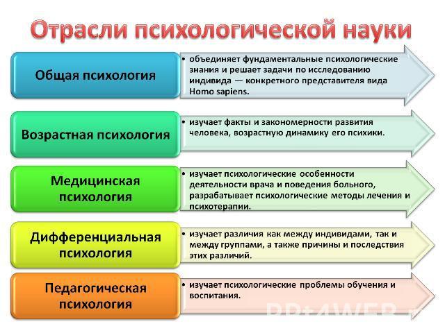 Политическая наука как самостоятельная отрасль знания - Opalubka-new.ru