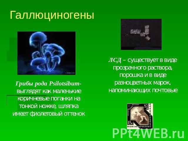 Галлюциногены