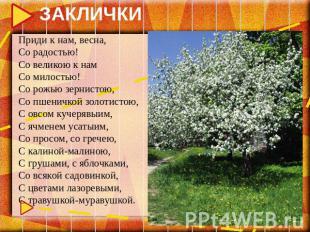 ЗАКЛИЧКИ Приди к нам, весна, Со радостью! Со великою к нам Со милостью! Со рожью