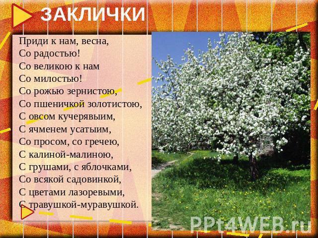 ЗАКЛИЧКИ Приди к нам, весна, Со радостью! Со великою к нам Со милостью! Со рожью зернистою, Со пшеничкой золотистою, С овсом кучерявыим, С ячменем усатыим, Со просом, со гречею, С калиной-малиною, С грушами, с яблочками, Со всякой садовинкой, С цвет…