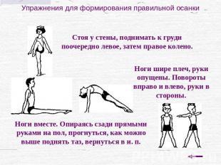 Комплекс упражнений при сколиозе пилатес
