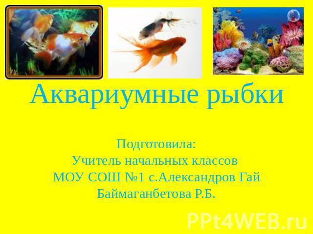 Презентация на тему аквариумные рыбки
