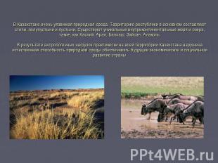В Казахстане очень уязвимая природная среда. Территорию республики в основном со