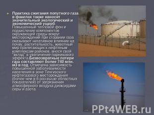 Практика сжигания попутного газа в факелах также наносит значительный экологичес