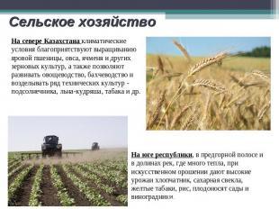 Сельское хозяйство На севере Казахстана климатические условия благоприятствуют в