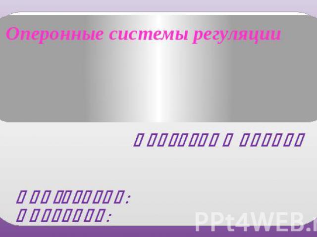 Лактозный оперон Подготовил: