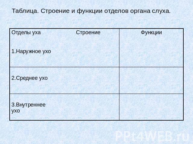 Таблица. Строение и функции