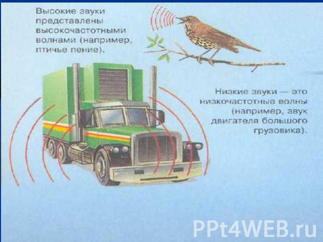 Презентация По Физике На Тему Звуки