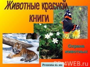 Животные красной книги Охрана животных