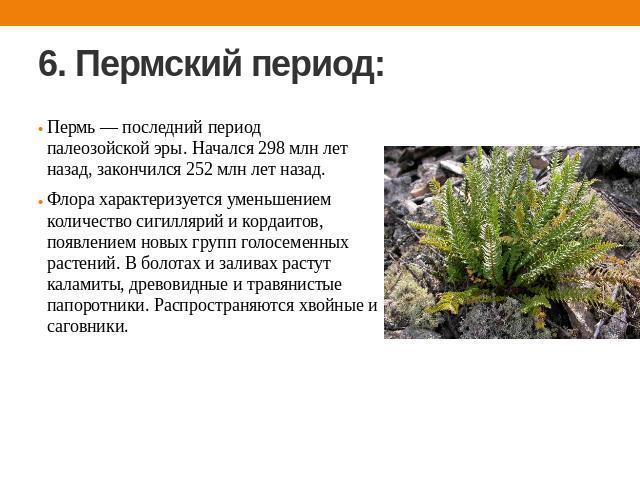 Презентацию по биологии по теме палеозойская эра