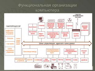 Нотация Процедура (Cross Functional Flowchart , функциональная блок- схема) бизнес-процесса, а так же всех участников...