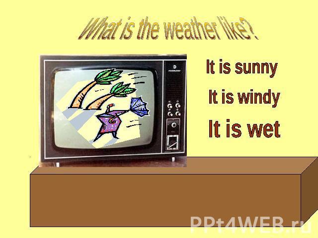 Презентация The Weather