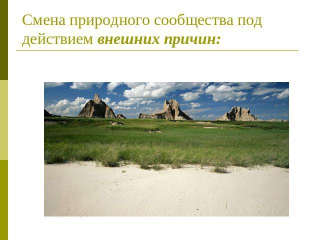Смена природного сообщества
