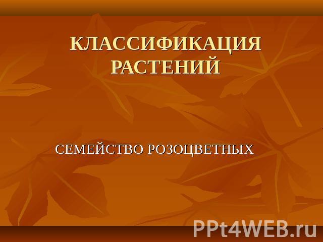 "Презентация на тему ""Половое"