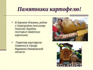 Памятники картофелю! В деревне Ильмень рядом с Новгородом пенсионер Николай Заря