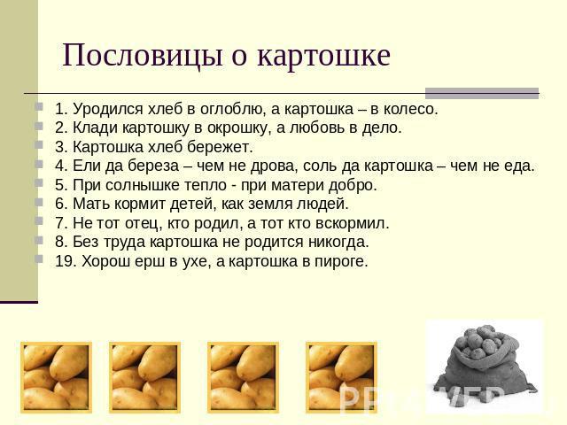 Пословицы о картошке 1. Уродился хлеб в оглоблю, а картошка – в колесо.2. Клади картошку в окрошку, а любовь в дело.3. Картошка хлеб бережет.4. Ели да береза – чем не дрова, соль да картошка – чем не еда.5. При солнышке тепло - при матери добро.6. М…