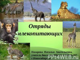 Отряды млекопитающих Назарова Наталья Анатольевна, руководитель биологии МБОУ СОШ №20