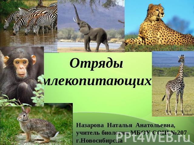 Отряды млекопитающих Назарова Наталья Анатольевна, руководитель биологии МБОУ СОШ №207 г.Новосибирска