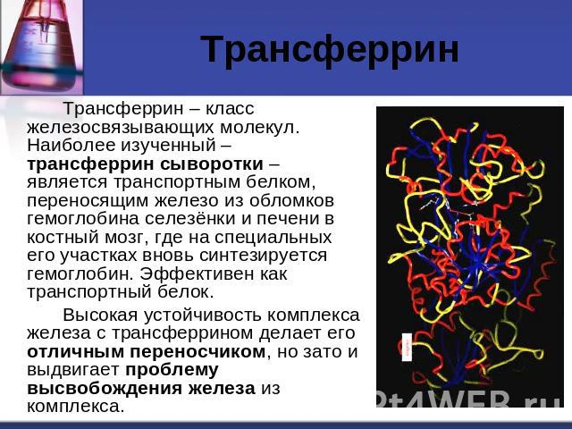 Трансферрин фото