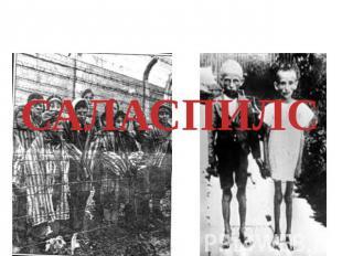 Детей использовали как бы доноров в целях сдачи крови, про раненных бойцов вермахта.САЛ
