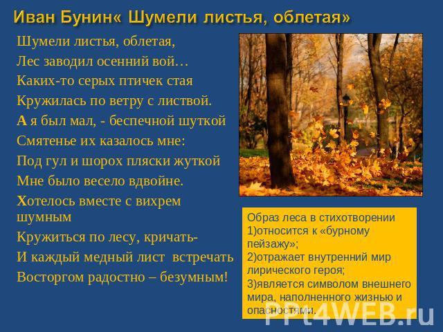 Образ Березы В Русской Поэзии Презентация