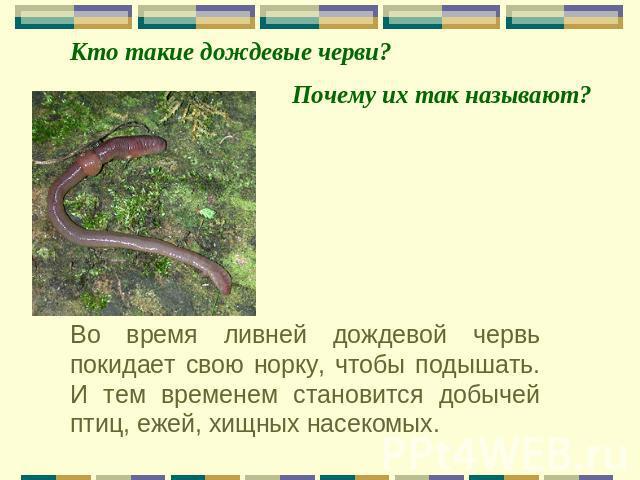 shemi-dlya-radiolyubiteley-na-raznie-temi