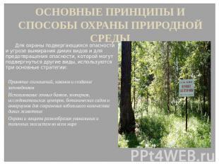 ОСНОВНЫЕ ПРИНЦИПЫ И СПОСОБЫ ОХРАНЫ ПРИРОДНОЙ СРЕДЫ Для охраны подвергающихся опа