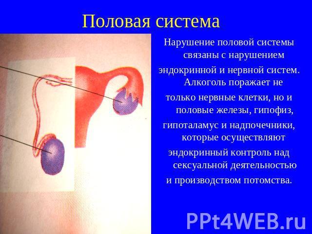 ambulatornoe-lechenie-analnih-treshin