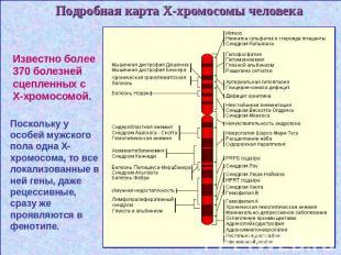 Локус  Википедия