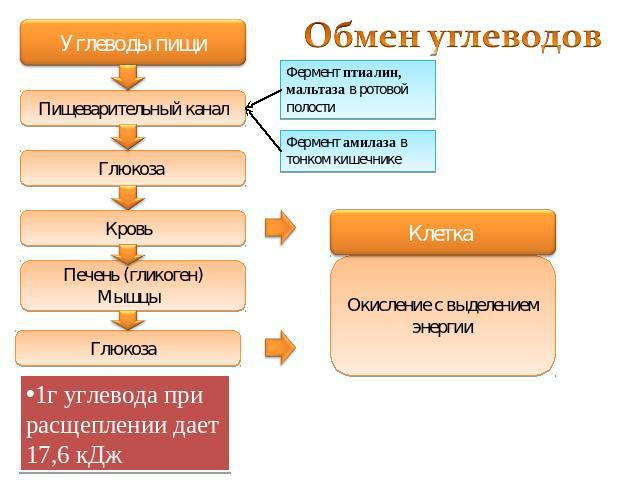 http://ppt4web.ru/images/8/9016/640/img9.jpg