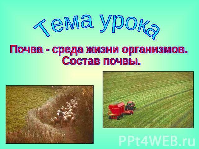 Презентация Состав Почвы