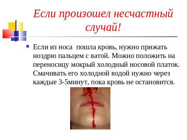 Как сделать чтобы кровь из носа не шла
