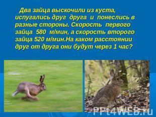 Два зайца выскочили из куста, испугались друг друга и понеслись в разные стороны.