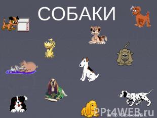 СОБАКИ автор : Берюхова Е.К.