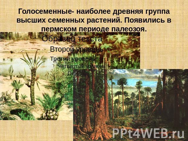 Животные тюменской области презентация