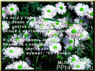 РомашкаНа лугу у той дорожки,Что бежит к нам прямо в дом,Рос цветок на длинной н