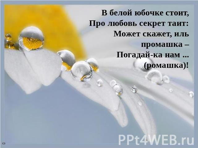 В белой юбочке стоит,Про любовь секрет таит:Может скажет, иль промашка –Погадай-ка нам...(ромашка)!