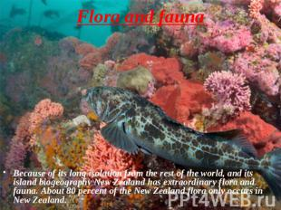 Flora and fauna Because of its long isolation from the rest of the world, and it