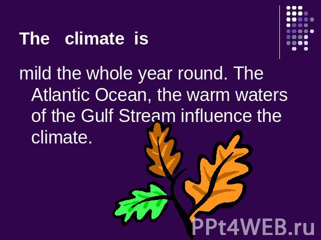 The climate is mild the whole year round. The Atlantic Ocean, the warm waters of the Gulf Stream influence the climate.