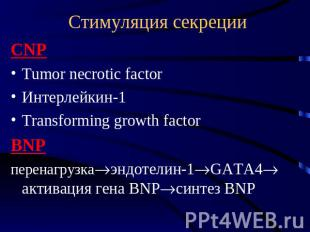 Стимуляция секреции CNP Tumor necrotic factor Интерлейкин-1 Transforming growth