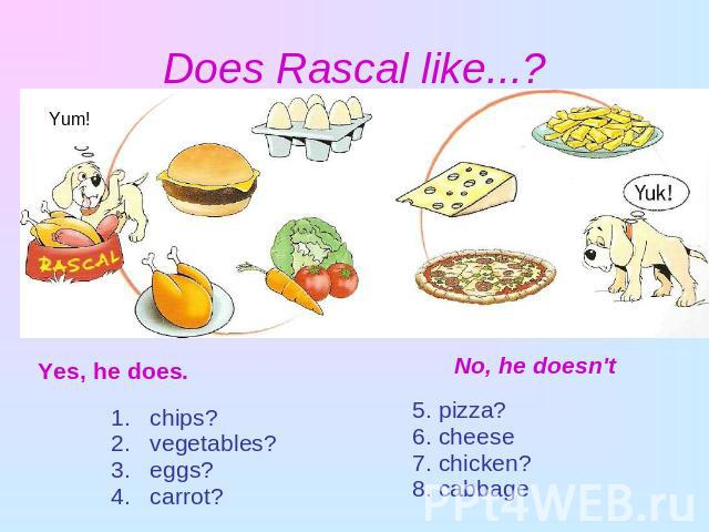 Does Rascal like...? Yes, he does. chips? vegetables? eggs? carrot?No, he doesn't5. pizza?6. cheese7. chicken?8. cabbage