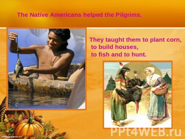 The Native Americans helped the Pilgrims.They taught them to plant corn, to build houses, to fish and to hunt.