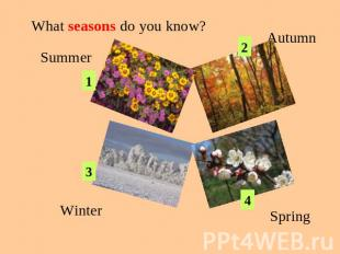 What seasons do you know? SummerAutumnWinterSpring
