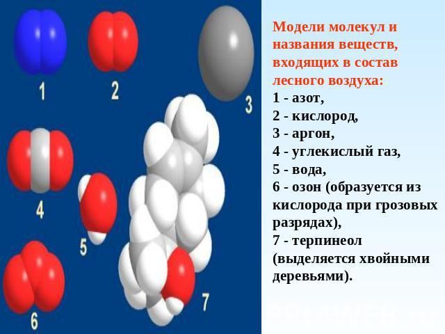 кислород образуется из молекулы углекислого газа правильного