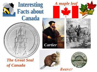 Interesting Facts about CanadaA maple leafThe Great Seal of CanadaBeaver Cartier