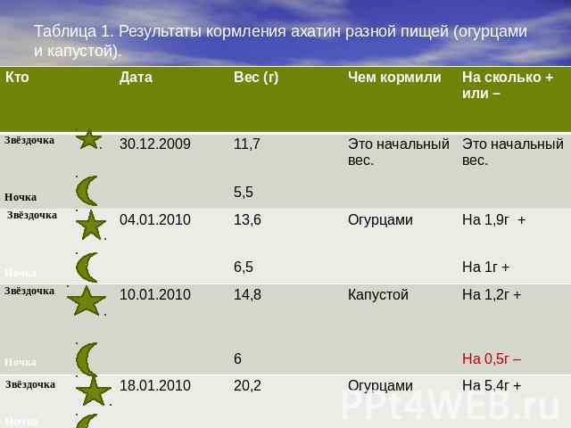 Таблица роста ахатины фулики стандарт
