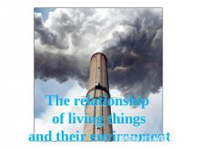 The relationship of living things and their environment